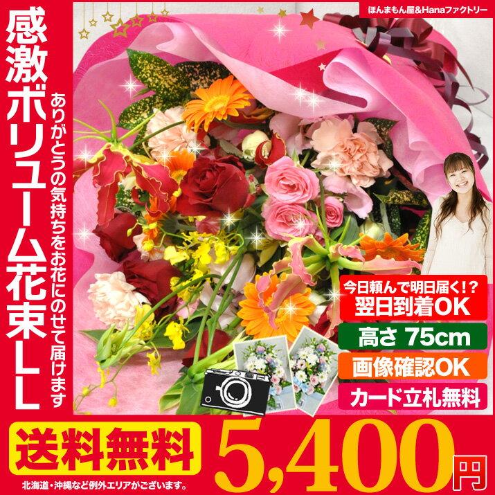 誕生日 の 御祝い に お祝い 花 ギフト 感激 花束 ブーケ LLサイズ 送料無料 プレゼント 用ギフトボックスでお届け あす楽 正午まで