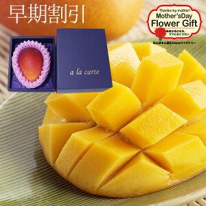 送料無料 母の日 フルーツギフト あまーい果汁ととろける果肉!大人気の宮崎産完熟マンゴー1玉プレゼント用ギフトボックス入り 2020