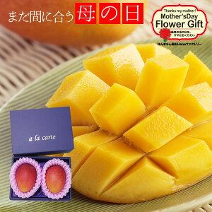 母の日 フルーツギフト 送料無料 宮崎県産 完熟マンゴー(大玉2個 各350〜400g)プレゼント用ギフトボックス入り 2021