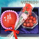母の日のプレゼント 送料無料 さくらんぼ 佐藤錦と 母の日 文字入りりんごセット シルクフラワーカーネーション 付き フルーツ プレゼ…