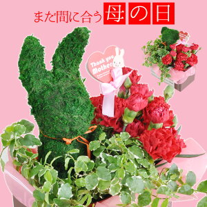 母の日 2021 プレゼント 送料無料 花 カーネーション & くまとうさぎで選べる トピアリーモス セット ギフト ボックス入り 送料無料 母の日プレゼント 母の日ギフト 鉢植え 母の日カーネー