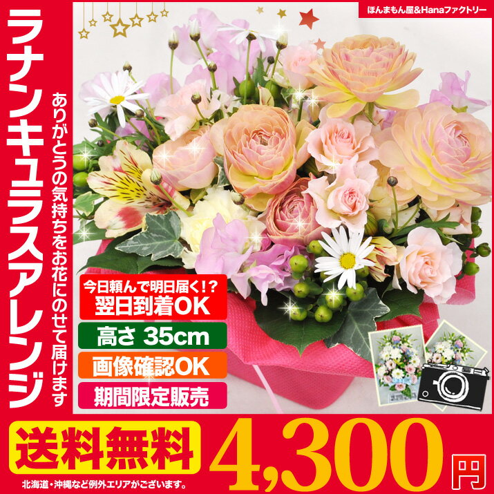 送料無料 2月のおHana/ ラナンキュラス バレンタイン フラワーアレンジメント に最適 健やか 誕生日 記念日 花ギフト プレゼント 専用 ギフト ボックス でお届け