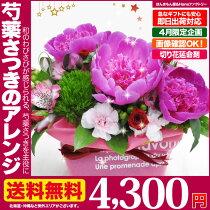 送料無料芍薬フラワーアレンジメント4月のおHana/しゃくやくシャクヤク誕生日記念日花ギフトプレゼント専用ギフトボックスでお届け