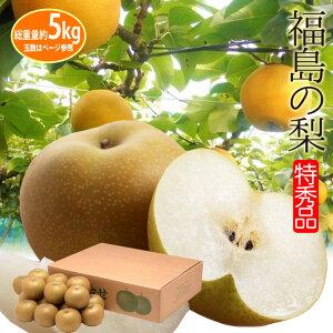 店長激オシ送料無料!甘い果汁たっぷり!福島県産「梨」5kg(14〜18玉)