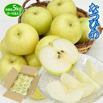 送料無料/鳥取県の新品種!青梨でありながら豊かな甘み「なつひめ」5kg