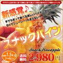 沖縄産 スナックパイン 2〜3玉 (約1.5kg) 送料無料 つまんで ちぎって 食べる パイナップル