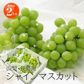 シャインマスカット 2kg 送料無料 山梨 長野県産 種無しで皮ごと食べられるぶどう フルーツ 果物