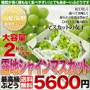 シャインマスカット 2kg 送料無料 山梨 長野県産 種無しで皮ごと食べられるぶどう フルーツ ギフト プレゼント