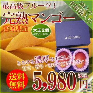 父の日ギフト送料無料宮崎県産完熟マンゴー(大玉2個各350〜400g)フルーツギフト