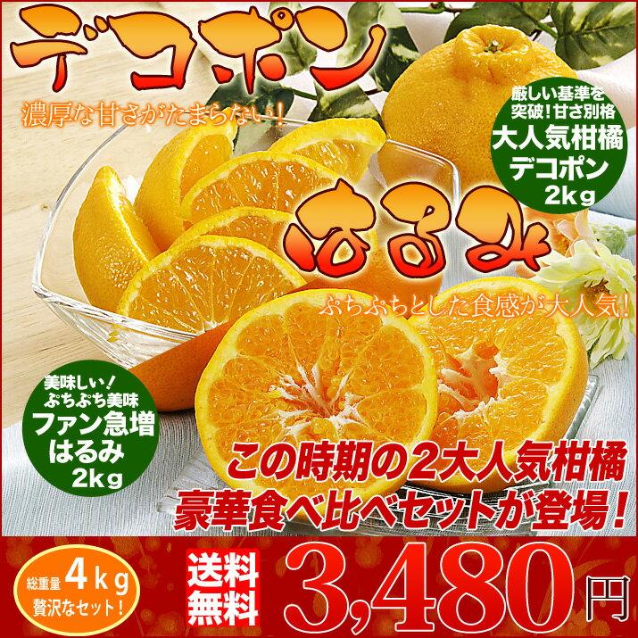 送料無料 はるみ デコポン 食べ比べ セット 春の2大 柑橘 合計 4kg みかんのように手で皮がむけます