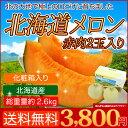 北海道 メロン 赤果肉 2玉入り 1玉1.3kg以上 送料無料 赤肉メロン お中元 ギフト フルーツギフト 御中元 果物