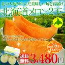 北海道 メロン 赤果肉 2玉入り 1玉1.3kg以上 送料無料 赤肉メロン お中元 ギフト フルーツギフト