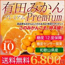 【送料無料】糖度センサー確認済み!糖度12度保障!中央AQ撰果場が贈るとっておきみかん「有田みかんプレミアム」5kg