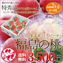 お中元 桃 ギフト 福島のもも 特秀ランク 2kg 送料無料 科学的に糖度を測定 光センサーで糖度を測定した福島の桃の最高等級の特秀品 訳あり ではありません