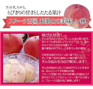 【送料無料】フルーツ王国和歌山の美味しい桃1.8kg