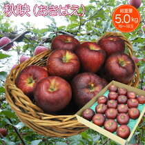 りんご秋映5kg16〜18玉長野県産フルーツギフト