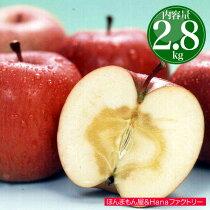 店長激オシ送料無料!全てのりんごに蜜が入っている青森県産「蜜入りサンふじ」10〜11玉
