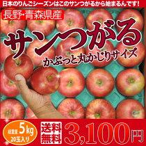 店長激オシ!!りんごシーズンのトップバッター!青森産サンつがる約5kg(16〜18玉)