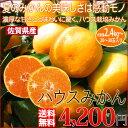 お中元 ギフト 送料無料 佐賀県産 ハウスみかん 2.4kg 皮が薄くて甘みたっぷりのハウスみかんです お中元ギフト フルーツギフト