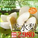 お中元 ギフト 送料無料福岡産 幸水梨2.6kg 暑いこの時期にぴったりの果汁をたっぷり含んだ梨です。 お中元ギフト フルーツギフト