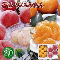 お中元フルーツギフト送料無料山梨産桃とハウスみかんセット御中元果物ギフトセット