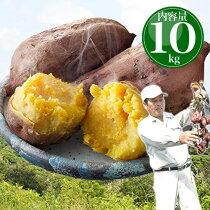 安納芋種子島産送料無料訳あり無選別10kgさつまいもサツマイモ焼き芋はもちろん干し芋にも