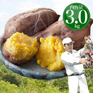 安納芋 種子島産 送料無料 訳あり 無選別 3kg 焼き芋 はもちろん干し芋にも さつまいも サツマイモ
