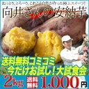 お試し 種子島・向井さんの安納芋2kg【シーズン最終の安納芋で今秋に向けての大試食会】