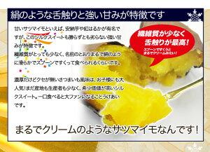 店長激オシ送料無料!!絹のような舌触りと強い甘みが特徴「シルクスイート」5kg