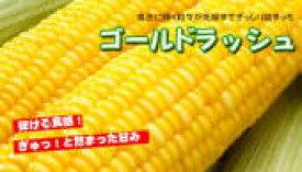 【送料無料】千葉、茨城産トウモロコシ4kg ※沖縄地区は除く