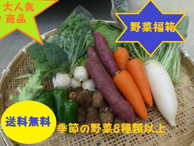 【送料無料】季節の野菜『千葉野菜福箱』季節の旬の野菜がたっぷり8種類以上!お試し価格で無料発送!御買得品!