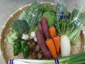 【送料無料】季節の野菜『千葉野菜福箱』季節の旬の野菜がたっぷり8種類以上!
