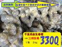 ★千葉産★三州姜種★1箱3kg品種