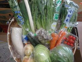 千葉茨城産野菜福箱12種以上保障