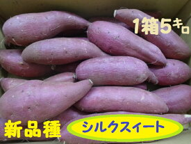 【送料無料】完熟品さつま芋『シルクスィート』家庭用訳有品1箱5kg送料無料で届けます。(沖縄除く)