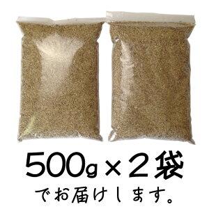 ペレニアルライグラス【種】1kgパッケージ
