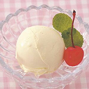 送料無料HOMESWANアイスクリームメーカー