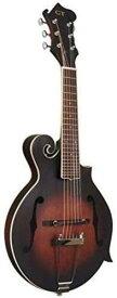 Gold Tone F-6 F-Style 6-String Guitar Mandolin [並行輸入品]