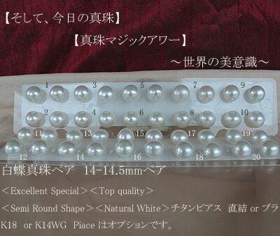 白蝶真珠ペア 14-14.5mmペア<Excellent Special><Top quality><Semi Round Shape><Natural White><Titan Piace>チタンピアス 直結 or ブラ K18 or K14WG Piace はオプションです。