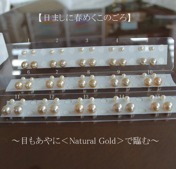 ●白蝶真珠ペア 9.75-10mm(横幅)<Round Shape><Natural Gold>×2コW環&アコヤ真珠越し物<生玉ゴールド>5.5-6mmt直結<Titan Piace>直結 orアメリカブラorSV金色アメリカブラ 選択くださいませK18などオプションです。