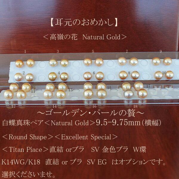 ●白蝶真珠ペア<Natural Gold>9.5-9.75mm(横幅)<Round Shape><Excellent Special><Titan Piace>直結 or SV 金色ブラ W環K14WG/K18直結 or ブラ SV EG は オプションです。選択くださいませ。