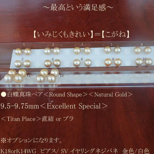 ●白蝶真珠ペア 9.5-9.75mm<Round Shape><NaturalGold><Excellent Special><Titan Piace>直結 or ブラ※オプションになります。K18orK14WG ピアス/ SVイヤリングネジバネ金色or白色