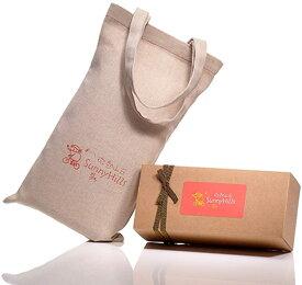 台湾パイナップルケーキ [並行輸入品]微熱山丘/サニーヒルズ10個入り 並行輸入 送料無料