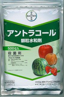 【取寄品】アントラコール顆粒水和剤 1kg