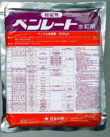 【メール便可】ベンレート水和剤 500g
