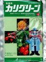 【メール便可】カリグリーン水溶剤 500g