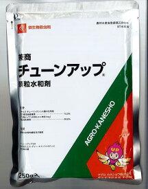【取寄品】チューンアップ顆粒水和剤 250g
