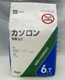 カソロン粒剤6.7% 3kg