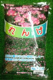 丸種 れんげのたね 1kg【紫雲英(レンゲ)】