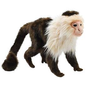 HANSA ハンサ オマキザル サル 5851 ぬいぐるみ 動物 アニマル リアル おすすめ クリスマス 誕生日 プレゼント ギフト ぬい撮り かわいい 動物園